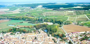 Bourgogne wine, Chablis Grand Cru appellation - Preuses