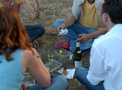Petit Chablis: conviviality and simple pleasures
