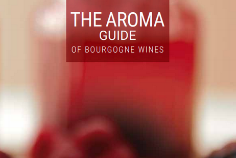 The aroma guide